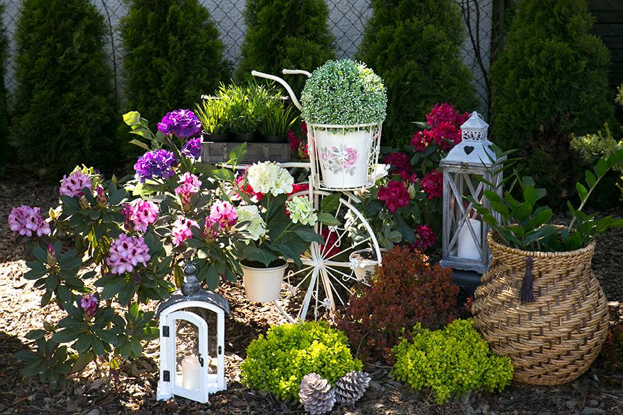 StylDekor - aranżacja ogrodu
